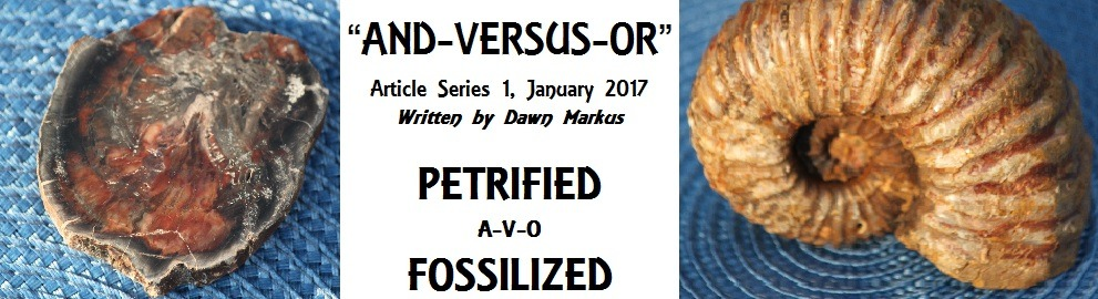 Dawn Markus Petrified v Fossilized
