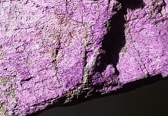 purpurite specimen ethical source